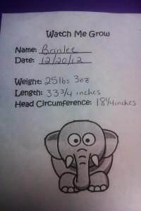 Brinlee dr report